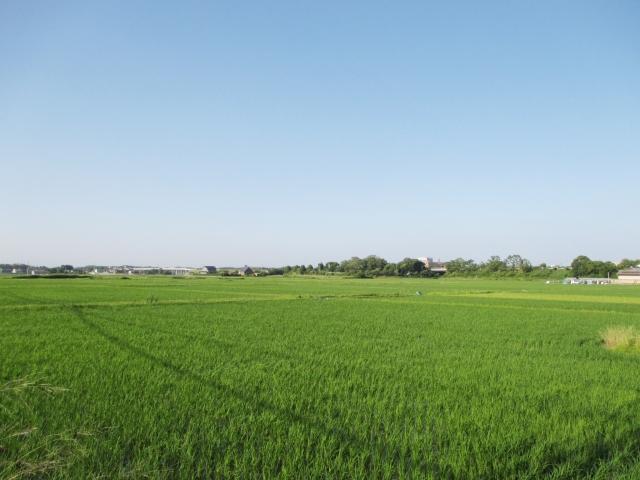農地を貸す・売る・変更する際の農地の手続きについて